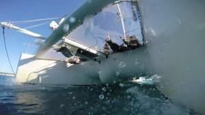 Le providence Maxi Catamaran (7)