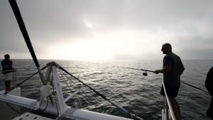Le providence Maxi Catamaran (8)