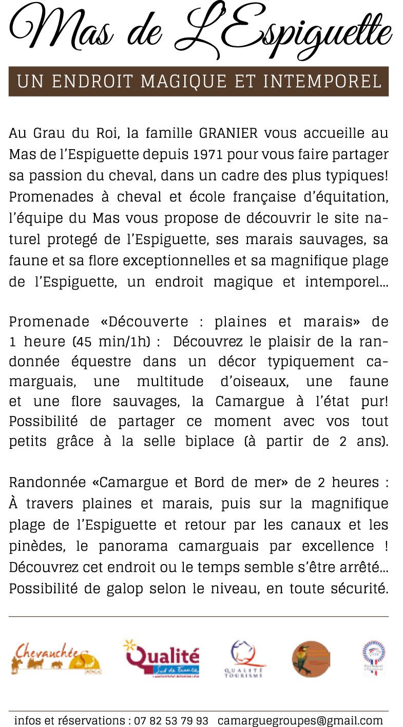 Brochure Camargue groupe B Def-5 copy