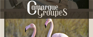 Pack Camargue - Le providence