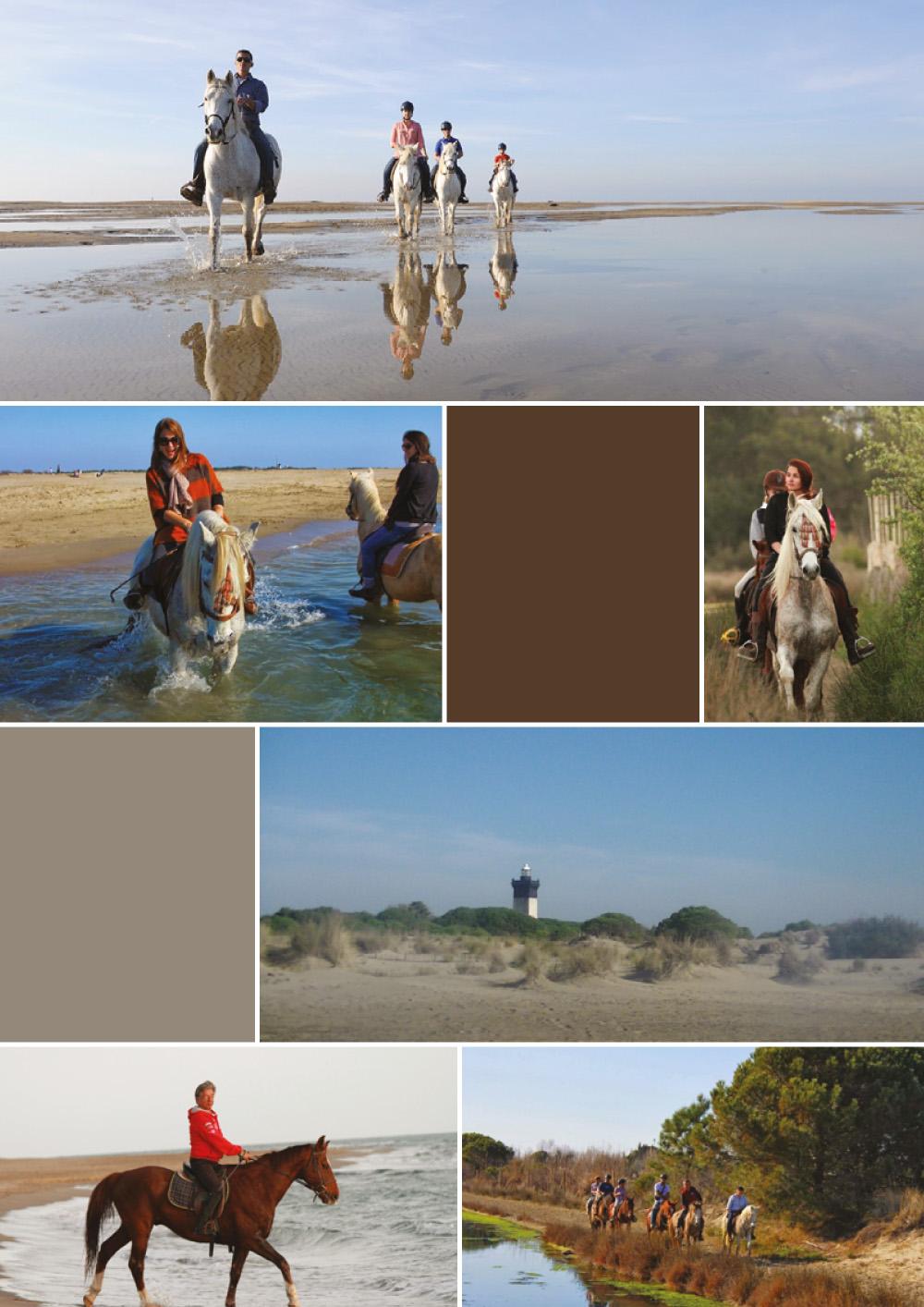 Brochure Camargue groupe B Def-4 copy